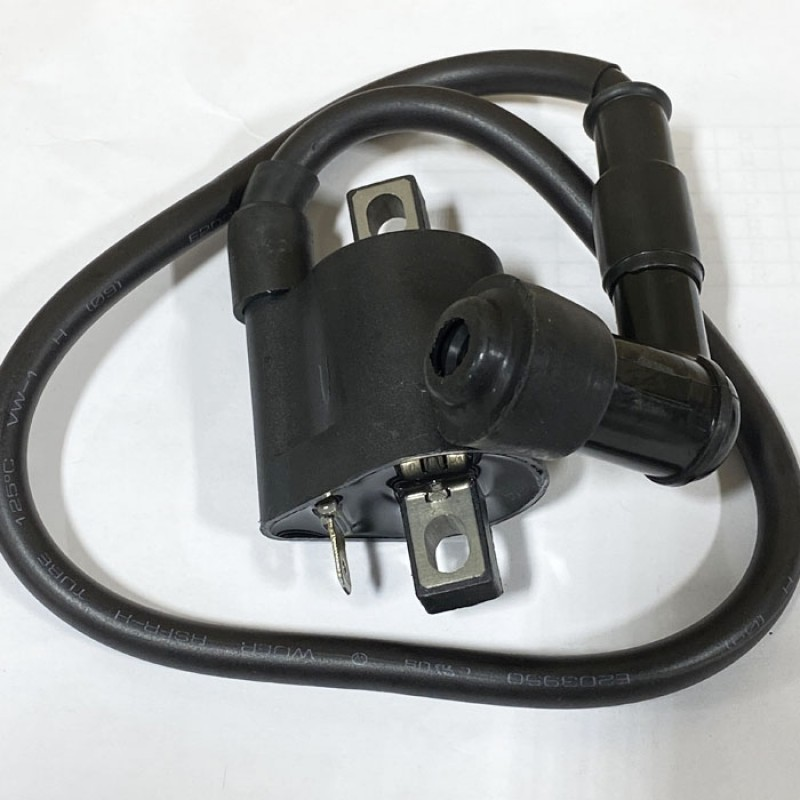 Ignition Coil for 250cc Motor