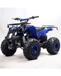 "125cc Kids ATV RFP-Grizzly, Kids/Youth Size,19"" Tire, Auto w/Reverse, Foot Brake"