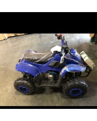 110cc Gas ATV DF110AVA Kids ATV with 6inch wheel, electric start, remote shut off switch (Refurbish, Ready to Ride Package, SELL AS IS)