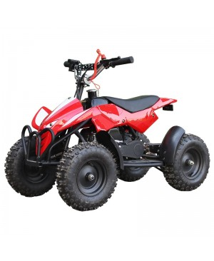 50cc Kids ATV Mini X-Sports High Power Two-Stroke Engine, Hand Strap Kill Switch with free goggle and glove