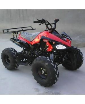 125cc Gas ATV Sport Style, Automatic/w Reverse, Big 18/19inch Tire