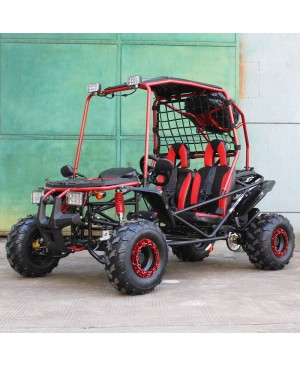 200cc GSX Go Kart, Full Size for Adult and Big Kids, Auto with Reverse, High Power Engine, Spare Wheel
