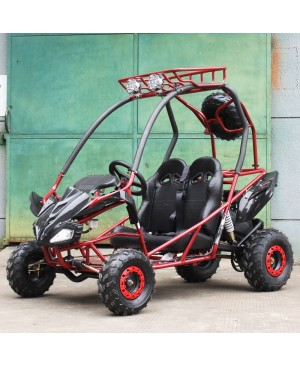 200cc Kids Go Kart Type-GVS, Automatic, Spare Wheel, remote control shutoff