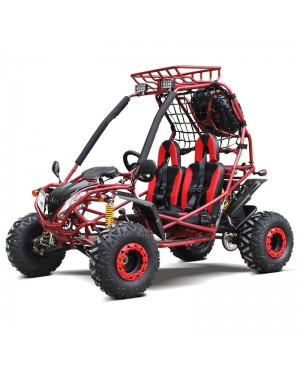 200cc GSA Go Kart, Full Size for Adult and Big Kids, Auto with reverse, High Power Engine, Electric/Pull Start, Big Wheel, Spare Wheel