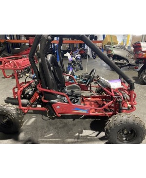 110cc TK-2A Kid's Gas Go Kart with Auto Tranny with Reverse (Refurbish, Minor scratch, SELL AS IS)